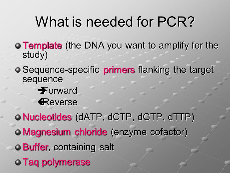 What is needed for PCR Template (the DNA you want to amplify for the study) Sequence-specific primers flanking the target sequence.