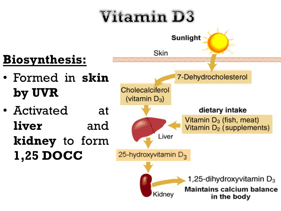 Vitamin D3 Biosynthesis: Formed in skin by UVR