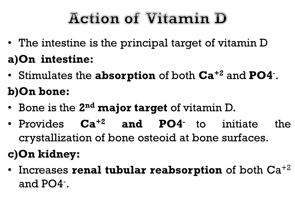 Action of Vitamin D The intestine is the principal target of vitamin D