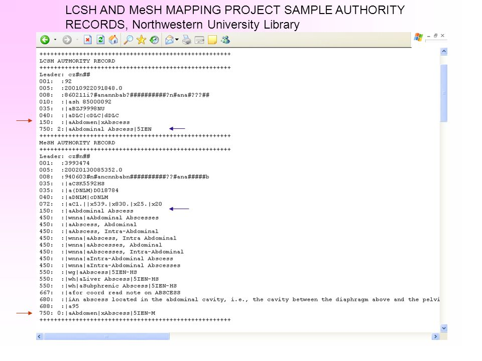 LCSH AND MeSH MAPPING PROJECT SAMPLE AUTHORITY RECORDS, Northwestern University Library
