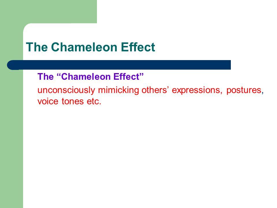 the chameleon effect involves