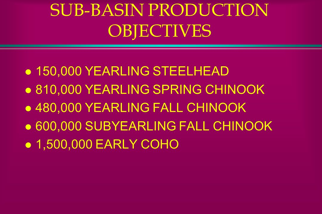 SUB-BASIN PRODUCTION OBJECTIVES
