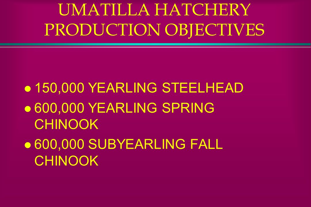 UMATILLA HATCHERY PRODUCTION OBJECTIVES