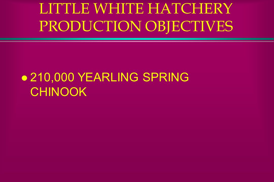 LITTLE WHITE HATCHERY PRODUCTION OBJECTIVES