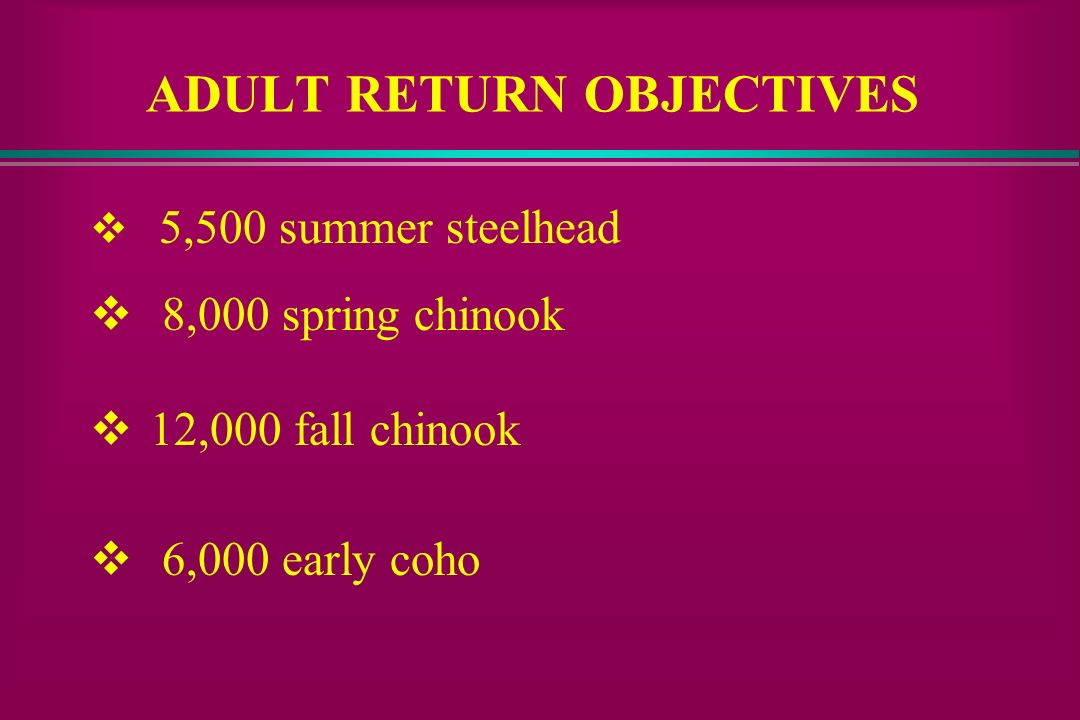ADULT RETURN OBJECTIVES