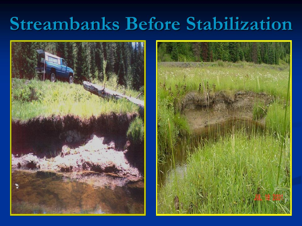 Streambanks Before Stabilization