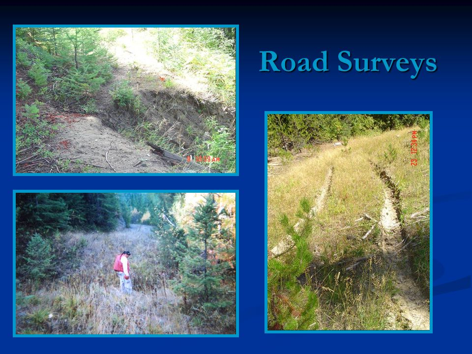 Road Surveys