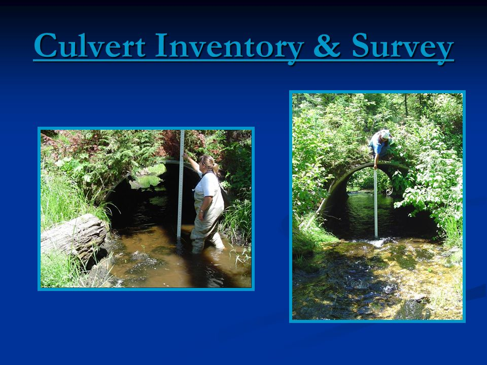 Culvert Inventory & Survey