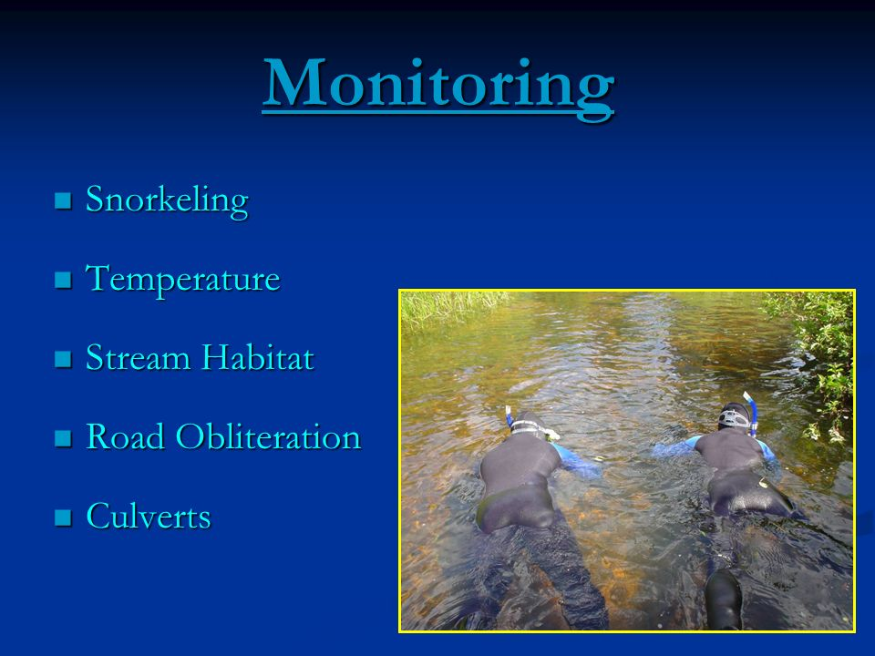 Monitoring Snorkeling Temperature Stream Habitat Road Obliteration