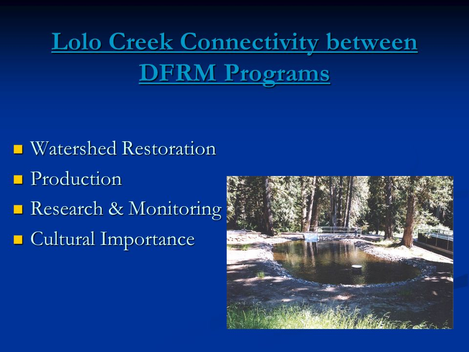 Lolo Creek Connectivity between DFRM Programs