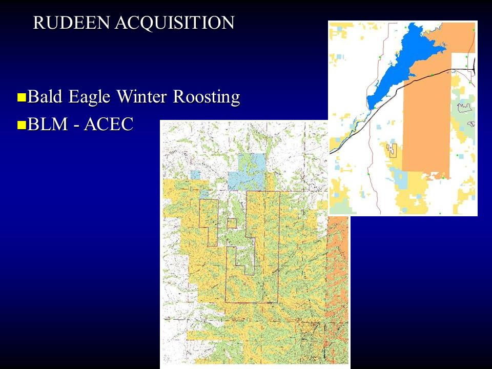 RUDEEN ACQUISITION Bald Eagle Winter Roosting BLM - ACEC