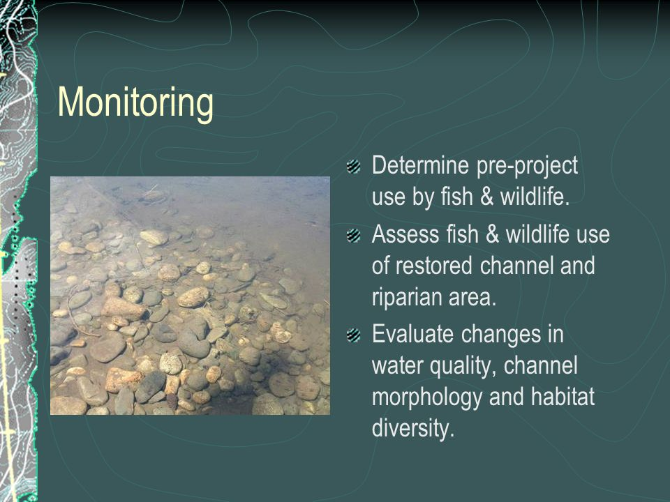 Monitoring Determine pre-project use by fish & wildlife.