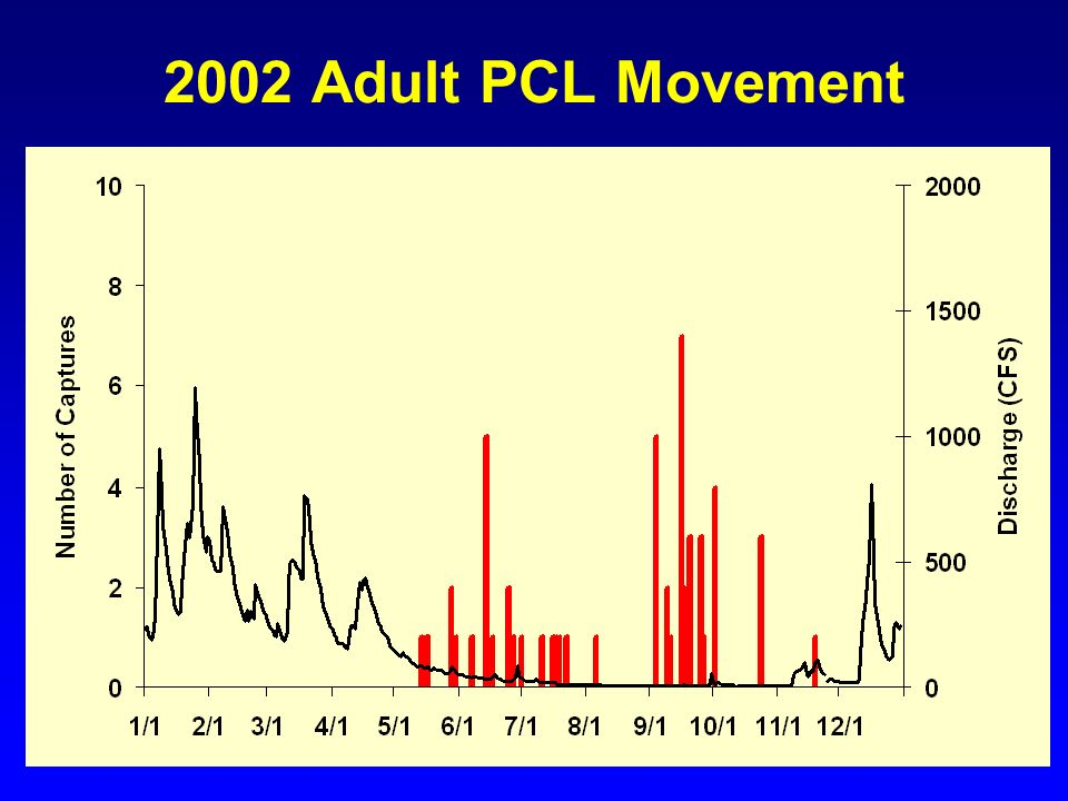 2002 Adult PCL Movement Two pulses early summer and late fall