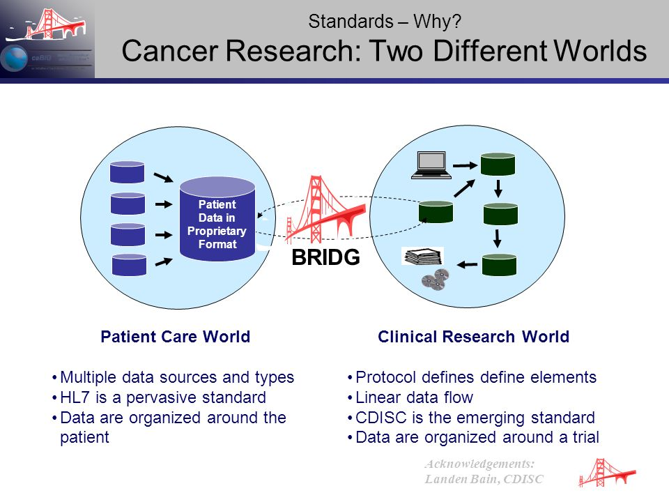 Standards – Why Cancer Research: Two Different Worlds