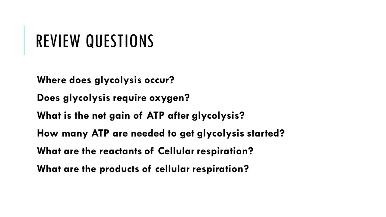 Review Questions Where does glycolysis occur