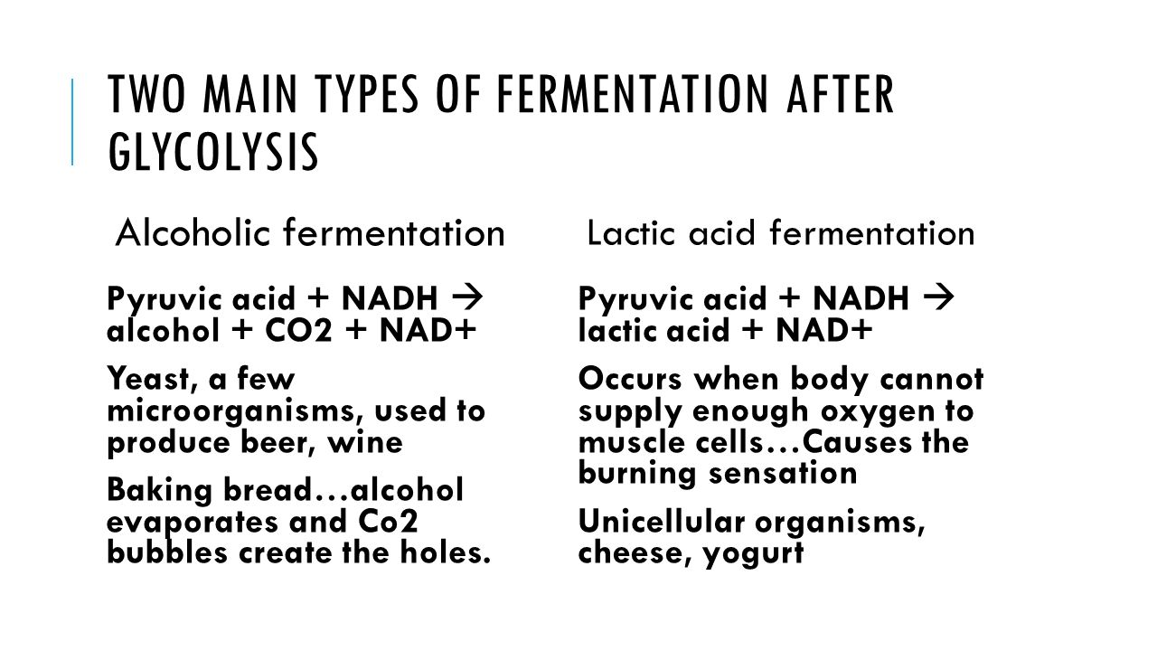 Two Main Types of Fermentation after glycolysis