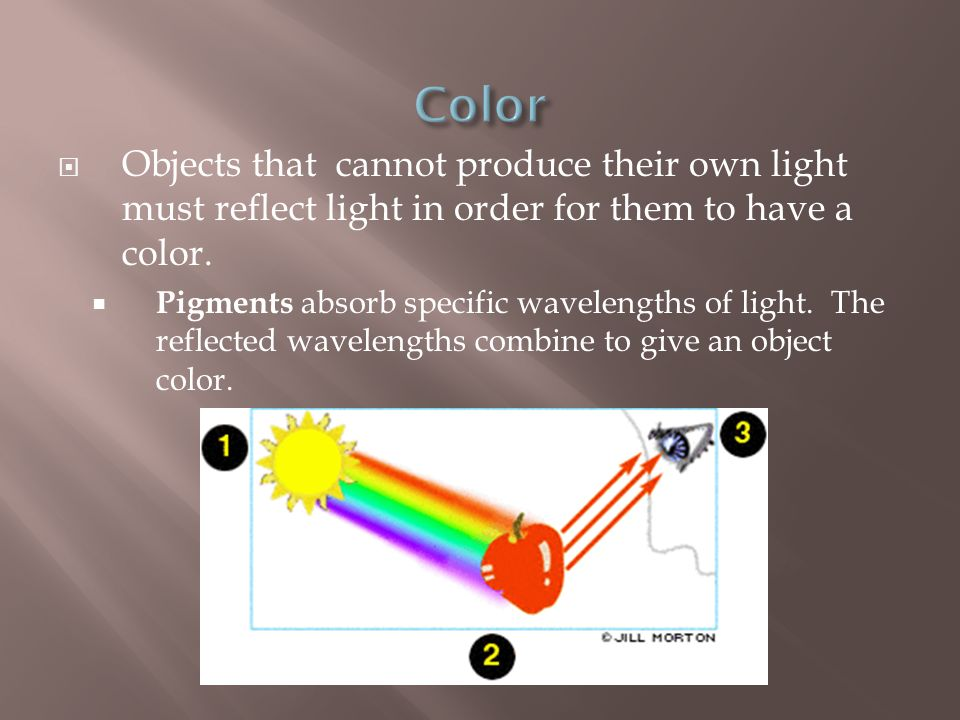 Color Objects that cannot produce their own light must reflect light in order for them to have a color.