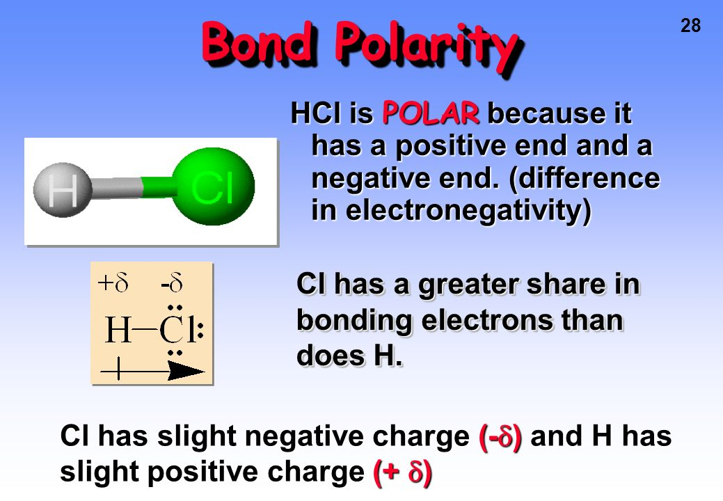 Bond Polarity HCl is POLAR because it has a positive end and a negative end. (difference in electronegativity)