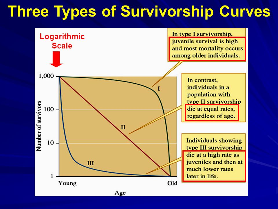Understanding how populations work ppt video online download three types of survivorship curves ccuart Image collections
