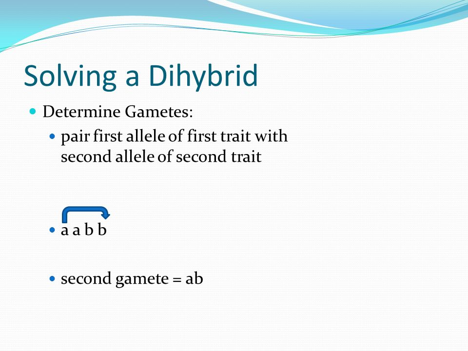 Solving a Dihybrid Determine Gametes: