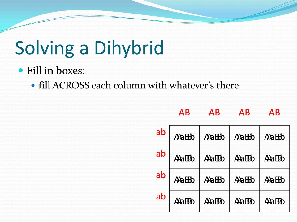 Solving a Dihybrid Fill in boxes: