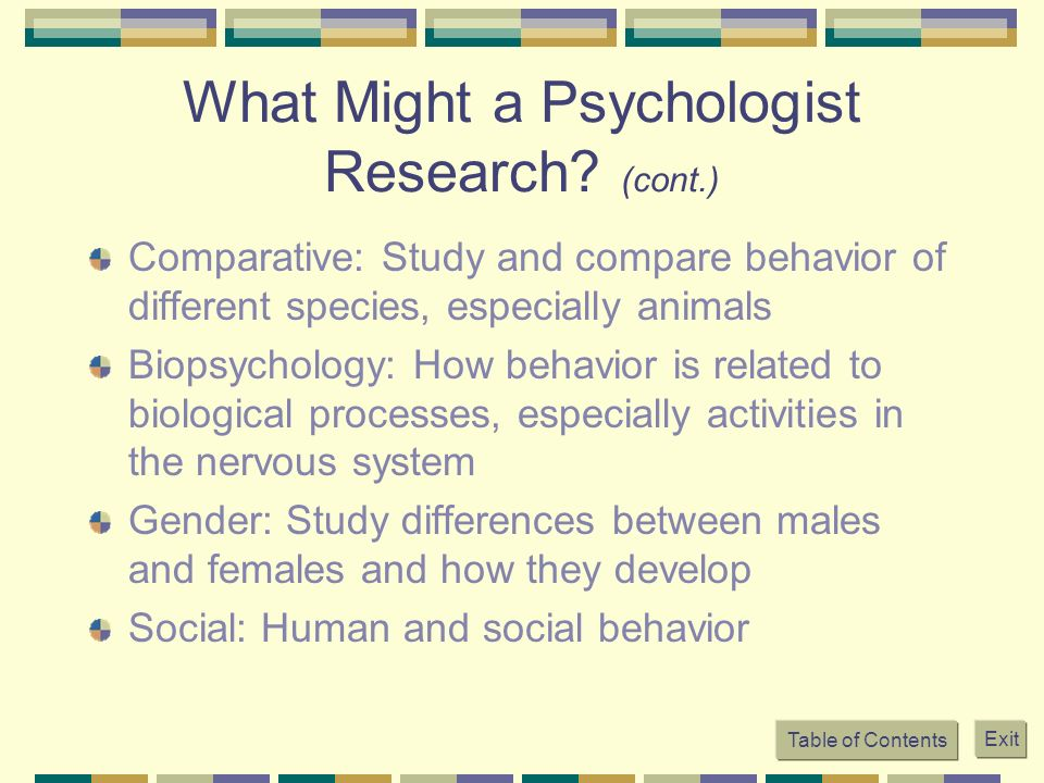 difference between human behavior and animal behavior