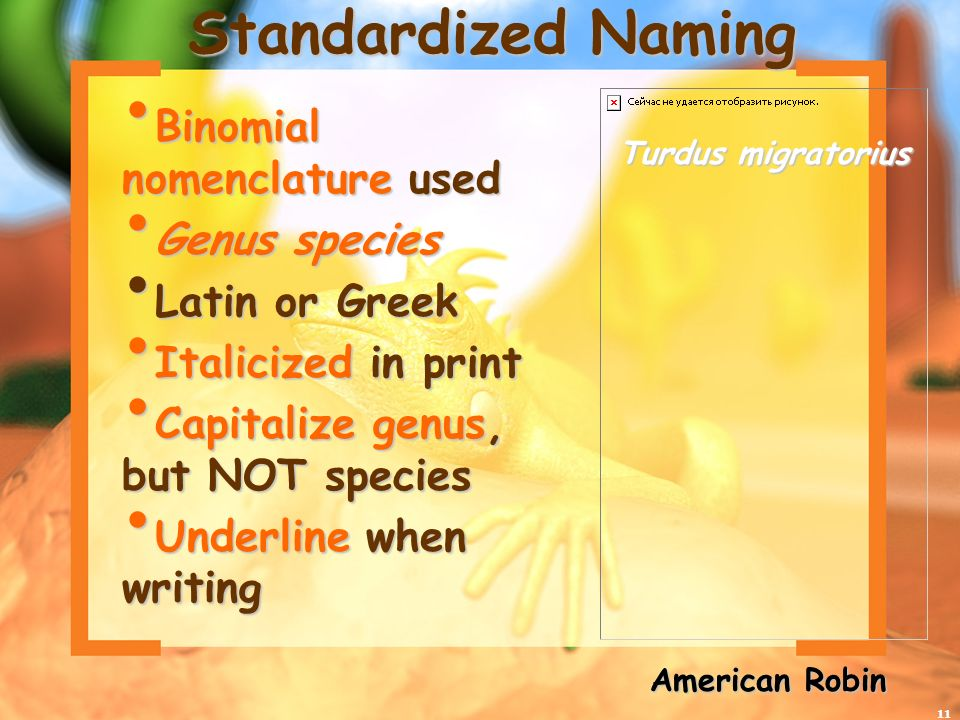 Standardized Naming Binomial nomenclature used Genus species