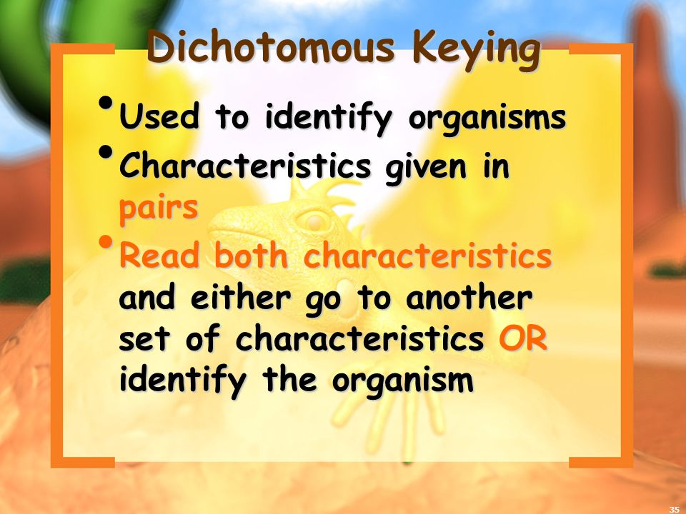 Dichotomous Keying Used to identify organisms