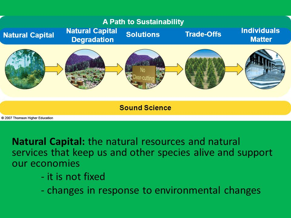 - changes in response to environmental changes