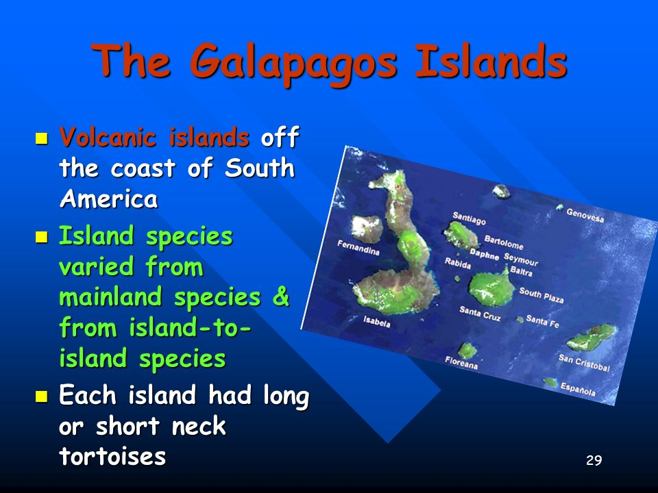 The Galapagos Islands Volcanic islands off the coast of South America