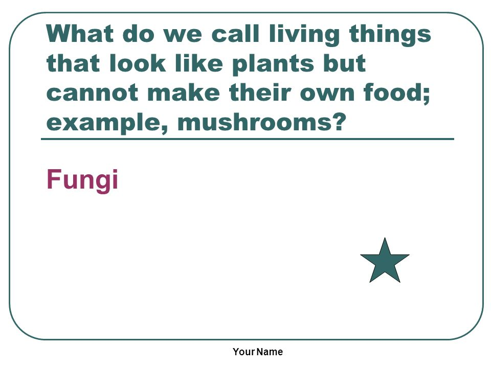 What do we call living things that look like plants but cannot make their own food; example, mushrooms