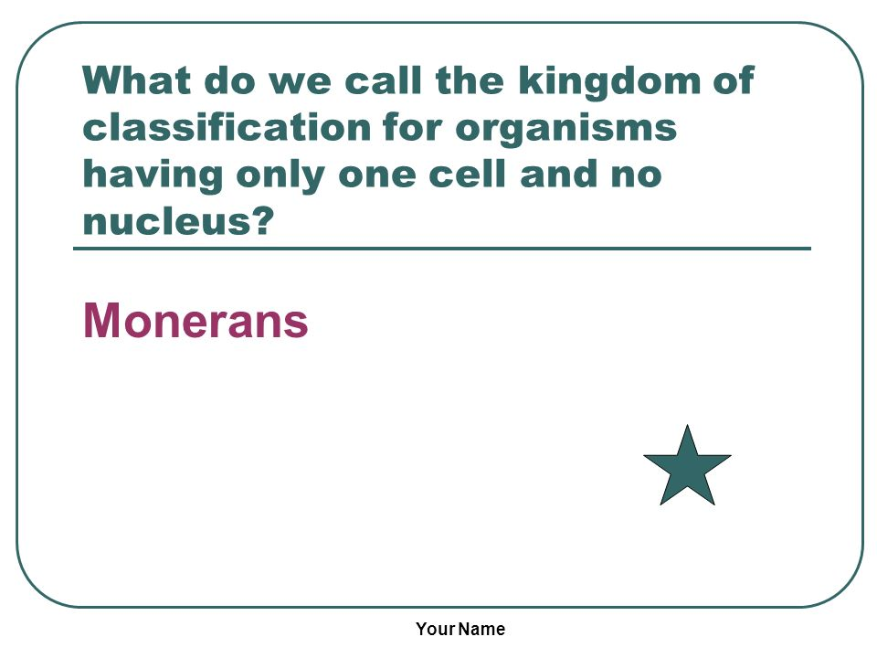 What do we call the kingdom of classification for organisms having only one cell and no nucleus