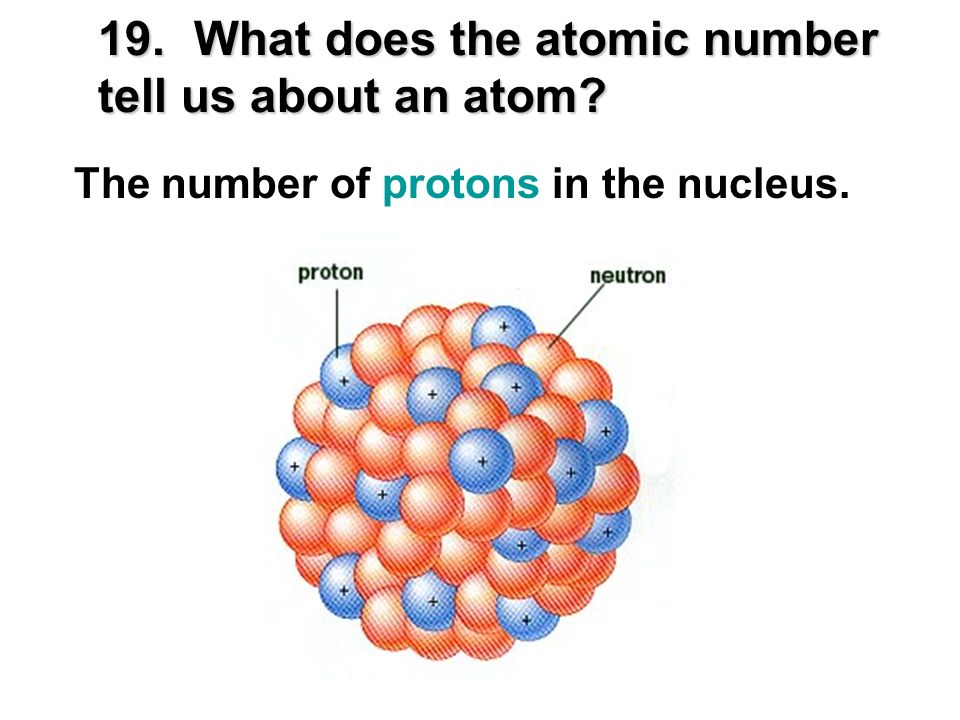 19. What does the atomic number tell us about an atom