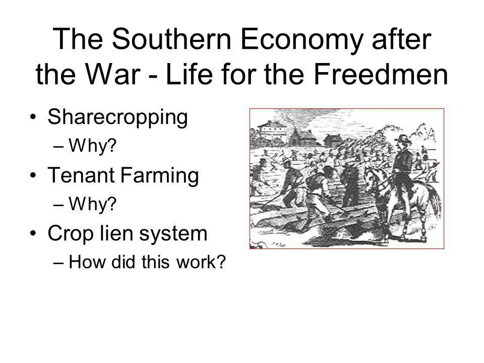 The Southern Economy after the War - Life for the Freedmen