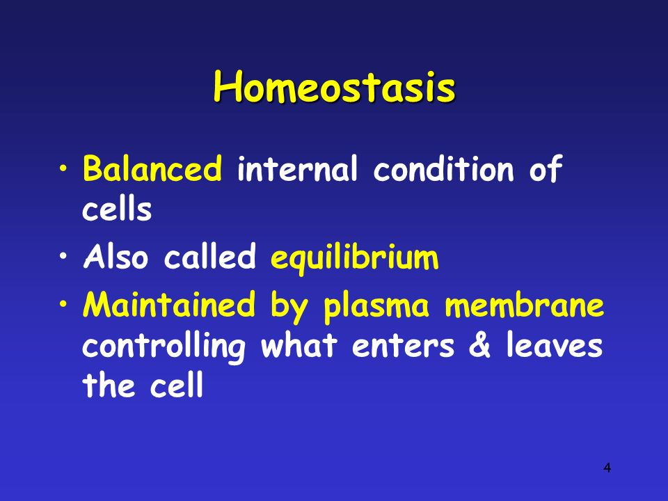 Homeostasis Balanced internal condition of cells