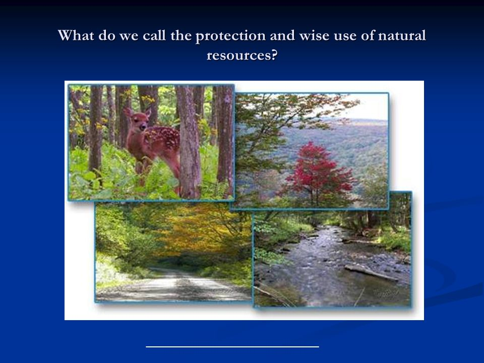 What do we call the protection and wise use of natural resources
