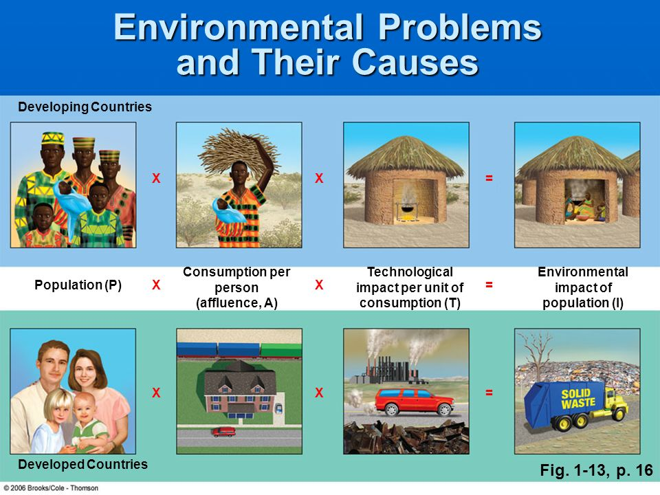 Environmental Problems and Their Causes