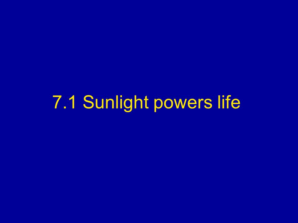 7.1 Sunlight powers life