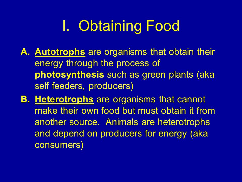 I. Obtaining Food