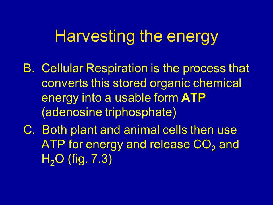 Harvesting the energy