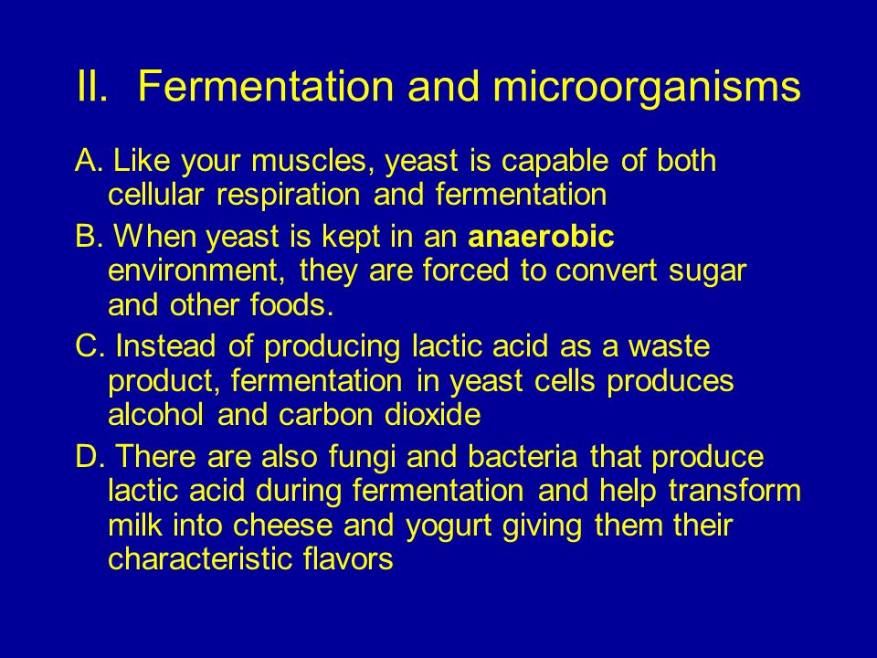 II. Fermentation and microorganisms