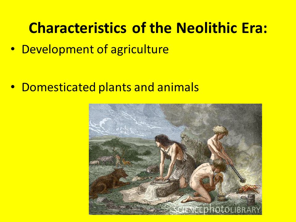 characteristics of the neolithic revolution