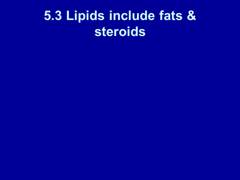 5.3 Lipids include fats & steroids