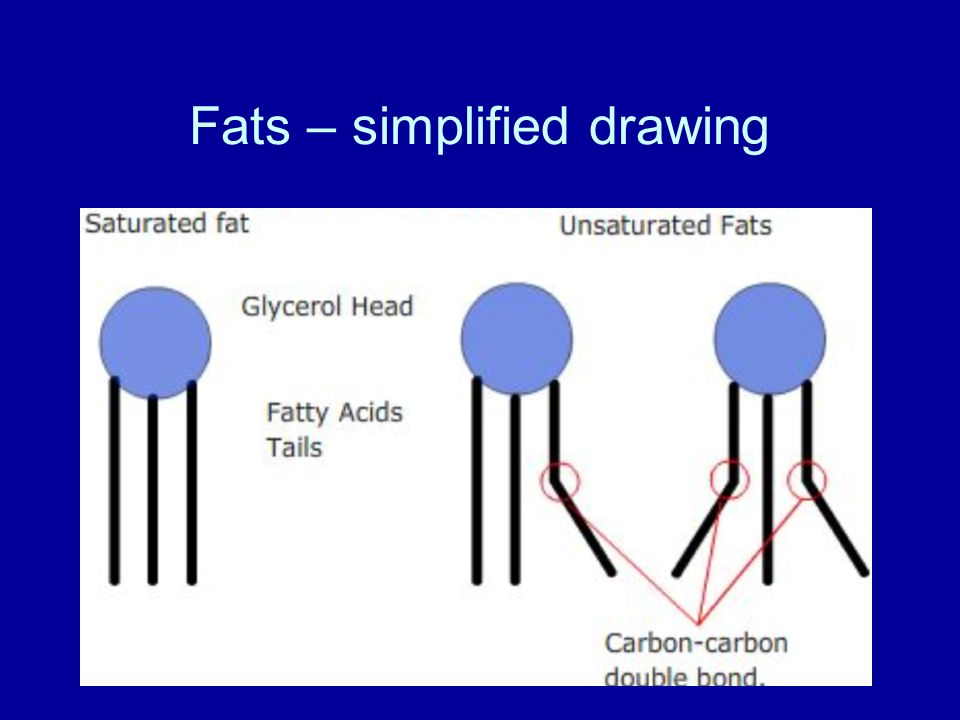 Fats – simplified drawing