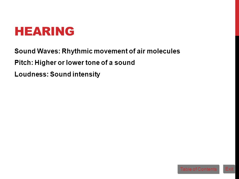 Hearing Sound Waves: Rhythmic movement of air molecules Pitch: Higher or lower tone of a sound Loudness: Sound intensity