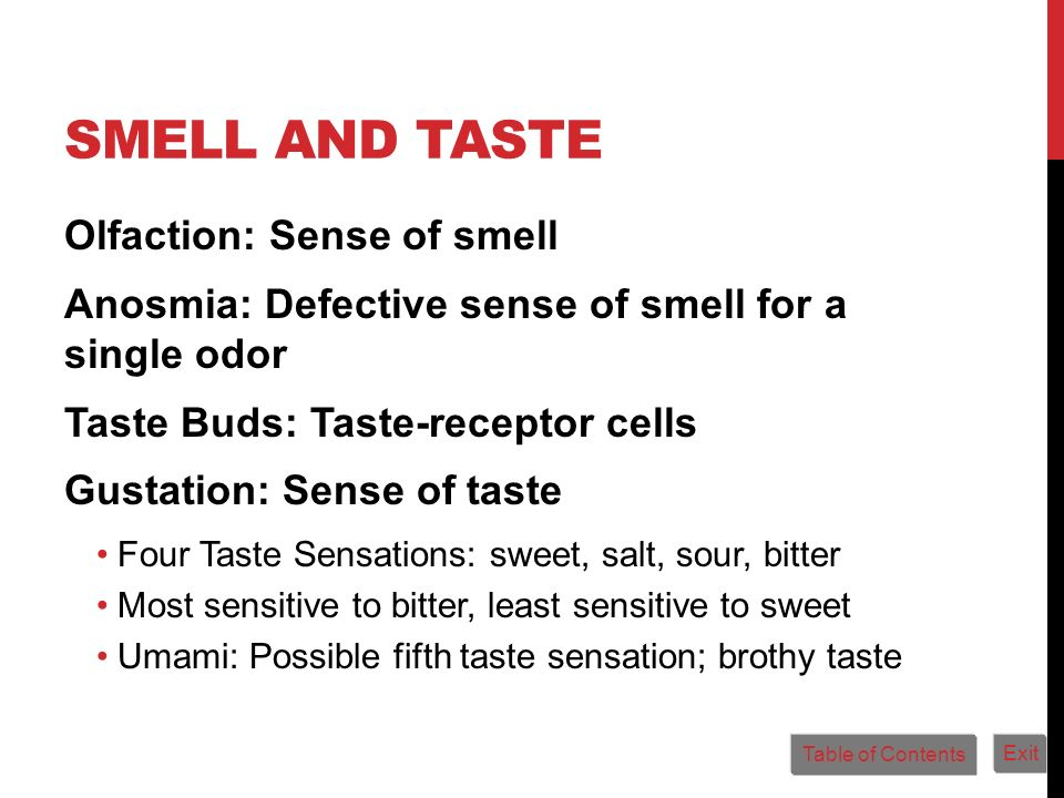 Smell and Taste Olfaction: Sense of smell