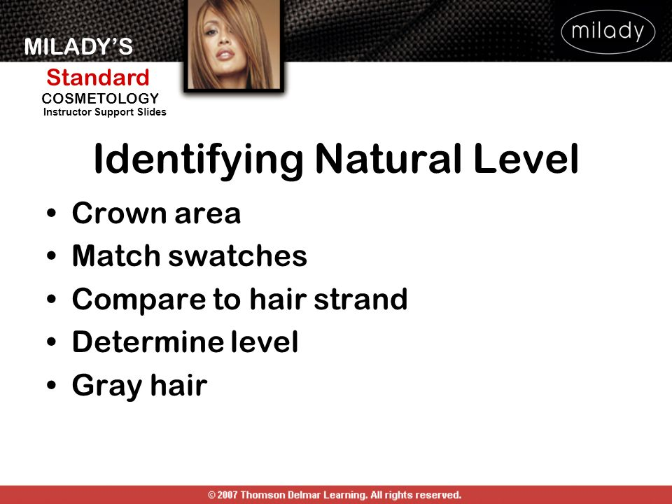 Haircoloring Color Theory Ppt Download