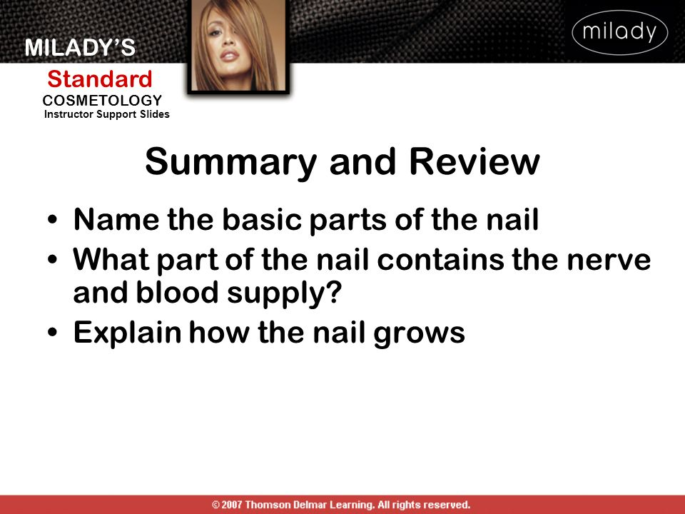 Summary and Review Name the basic parts of the nail