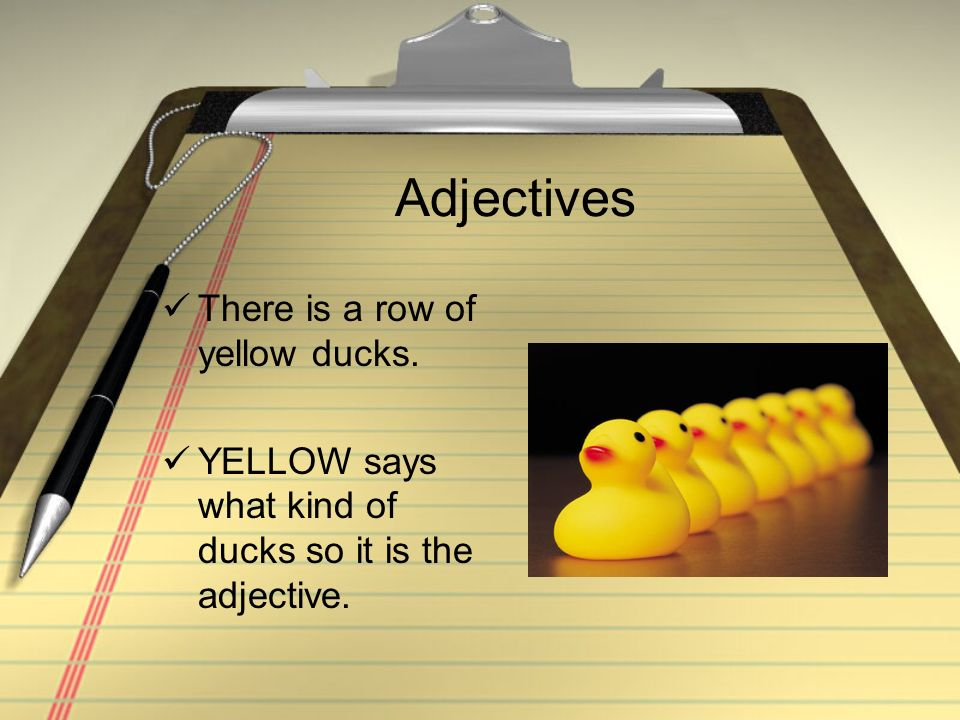 Adjectives There is a row of yellow ducks.