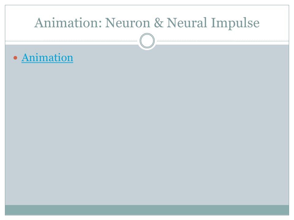 Animation: Neuron & Neural Impulse